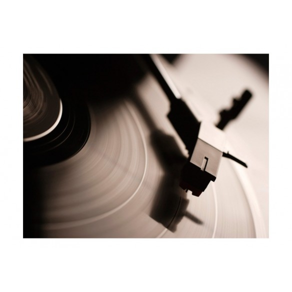 Fototapet  Gramophone and vinyl record