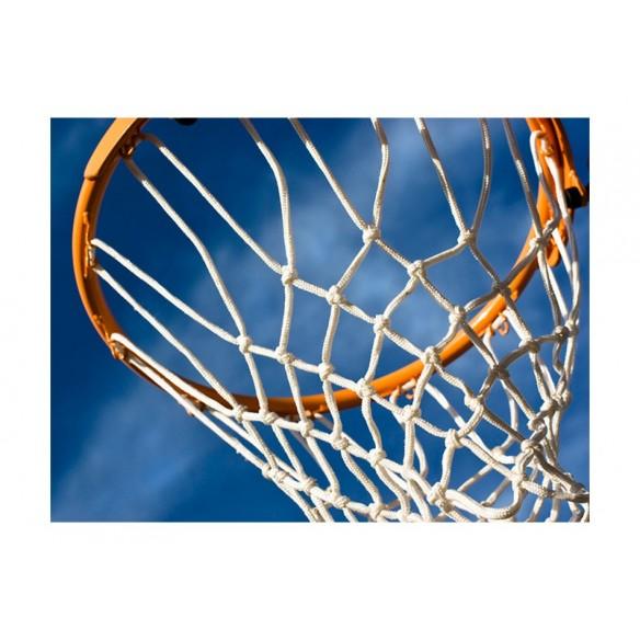 Fototapet  sport  basketball