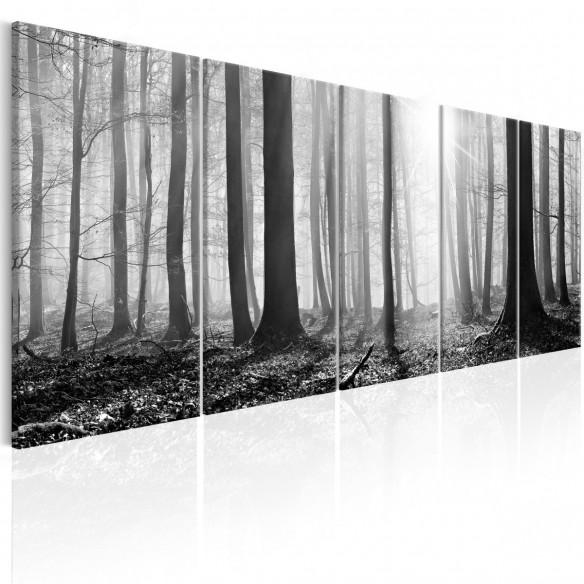 Tablou  Monochrome Forest