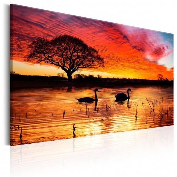 Tablou  Swan Lake