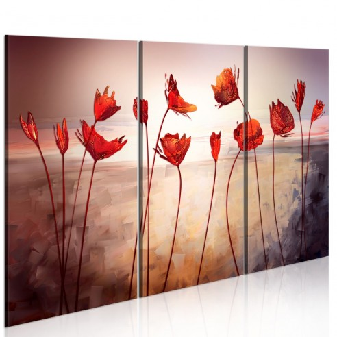 Tablou  Bright red poppies