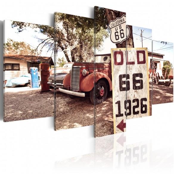 Tablou  California  vintage style