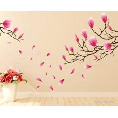 Crengute de magnolie -...