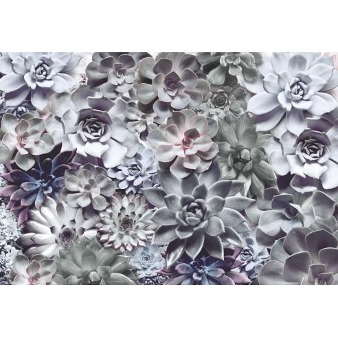 Fototapet Komar Shades (368 x 254 cm)