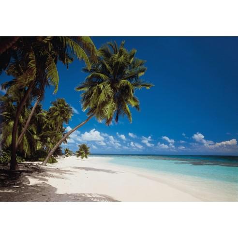 Fototapet Komar Malediven (388 x 270 cm)