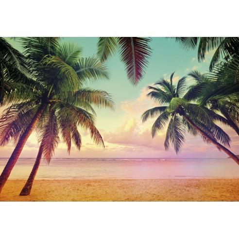 Fototapet Komar  Miami (368 x 254 cm)