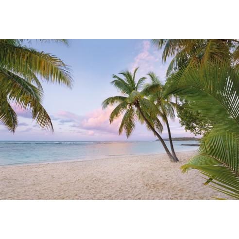 Fototapet National Geografic Paradise...