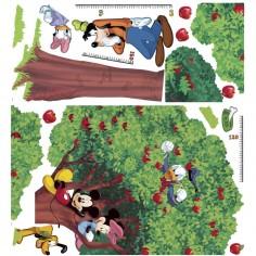 Sticker decorativ Mario Kart 8