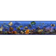 Bordura Fauna marina