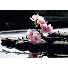 Sricker Decorativ Floral