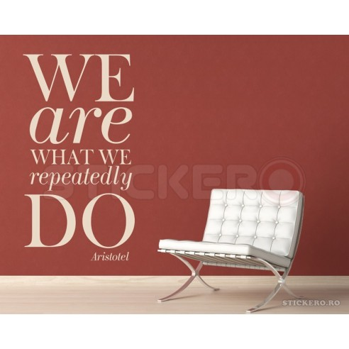 We are what we repeatedly do -...