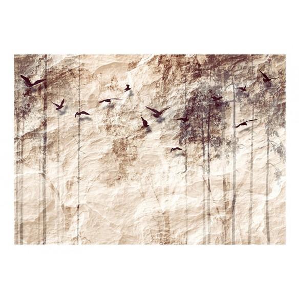 Fototapet  Paper Nature